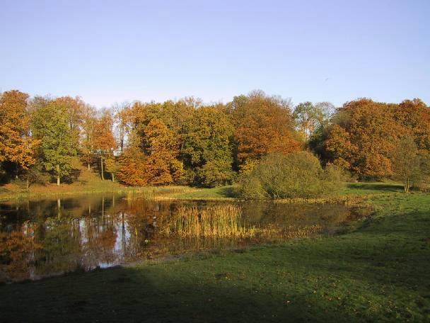 AnneMarieSø i efterårsfarver