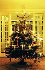 Pyntet juletræ