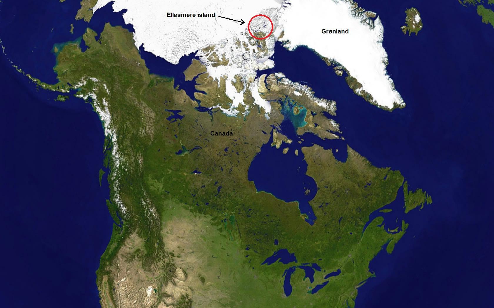 Placering af Ellesmere Island (Foto Wikipedia)