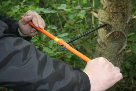 Trækerne bores ud ad træ for at påvise forurening