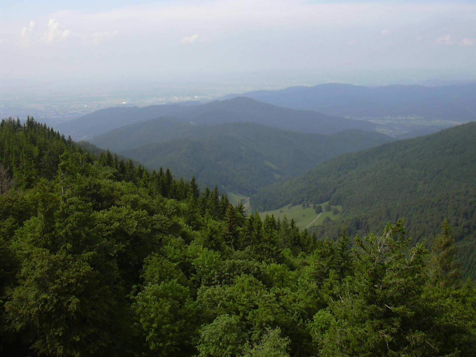Udsigt over Schwarzwald og Rhinsletten, Freiburg, Barden-Würtenberg, Tyskland