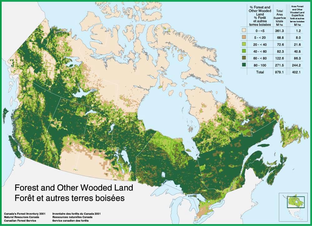 Canadas skovdække