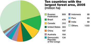 Verdens 10 største skovlande i følge FAO. Kilde: FAO Forest Resource Assessment 2005.