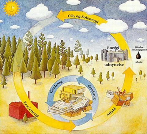 CO2-kredsløbet for træ. Ved træers vækst optages CO2 i træet. Når træet brændes eller rådner frigives CO2 igen. I mellemtiden kan vi bruge træet til papir, husbyggeri osv. Hvis vi opsamler energien, når træet brændes, kan vi spare på de ikke-fornyelige brændsler som olie og kul, og derved også undgå frigivelse af ekstra CO2 fra olien og kullet.