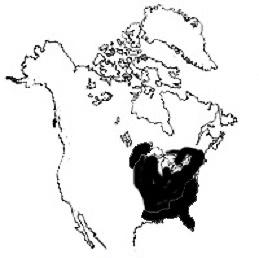 Soft maples geografiske udbredelse. Kortet er sammensat af Rød løn og Sølv løns udbredelse