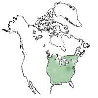 Rødegs naturlige udbredelse. (Quercus rubra og Quercus falcata)