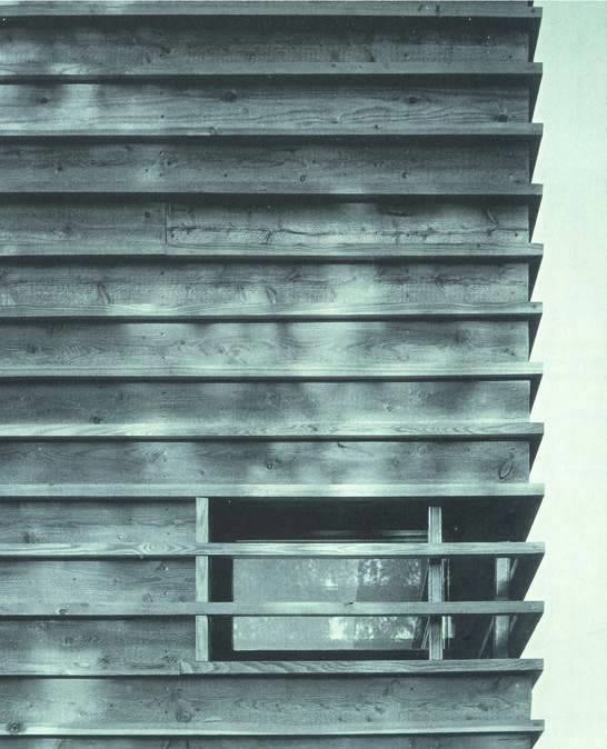 Detalje fra facadebeklædning. Tegnestuen har søgt inspiration i udlandet. (Foto: Arkitema)