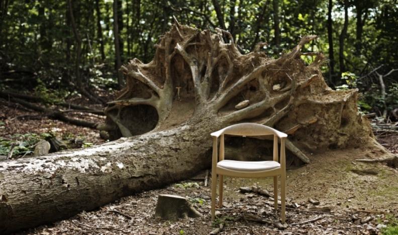 Designer med fokus på træ
