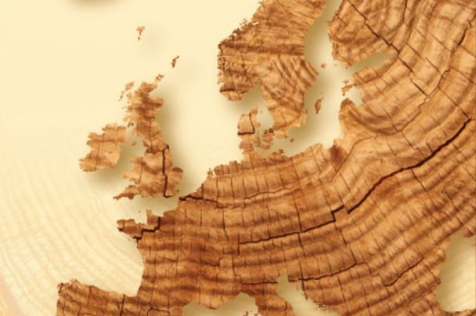 Europa træ