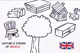 Natures stroke of genius