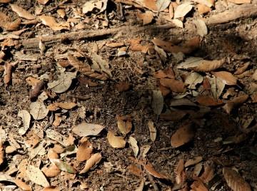 boreprøve afslører forurenet jord og grundvand
