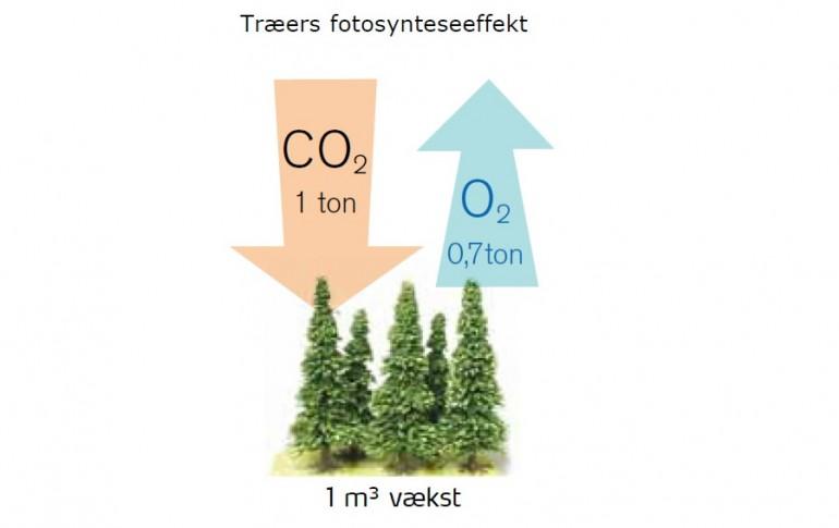 Usædvanlig Hvor meget CO2 udleder træ? - Træ.dk TH46