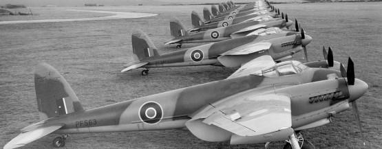 bombefly af træ