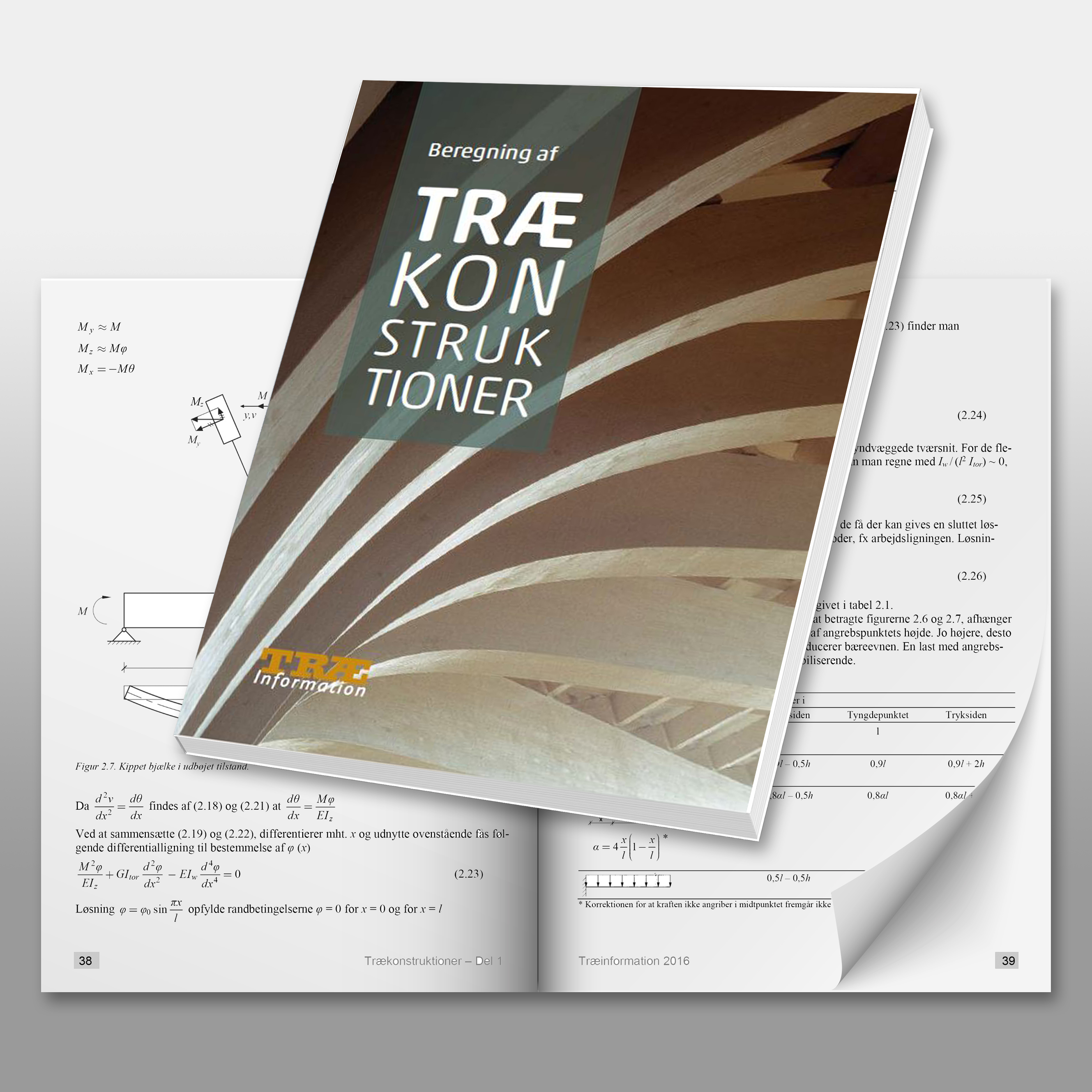 beregning-af-traekonstruktioner-forside
