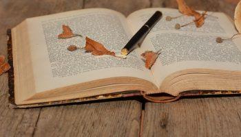 bøger om træ