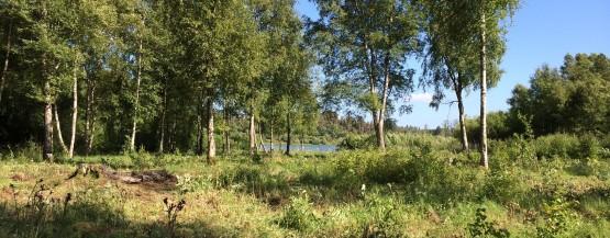 Træhus i smukke omgivelser og skøn natur