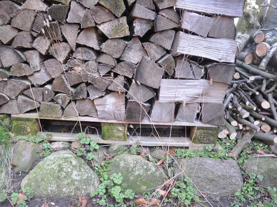 Brænde skal opbevares fri af jordkontakt, som fx her vha gammel palle. Foto: Træ.dk