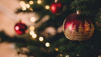 Lej et juletræ
